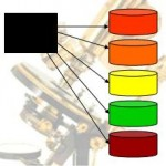 RAID Configuration