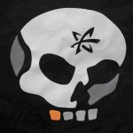 Fusion-io Skull